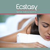 Ecstasy Spa Resorts, Vol. 1 by Various Artists