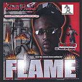 Take Over de Lil Flame