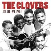 Blue Velvet van The Clovers