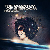 The Quantum of Bigroom House de Various Artists