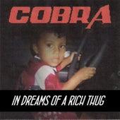 In Dreams of a Rich Thug by Cobra