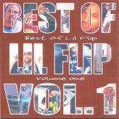 Best of Lil Flip, Vol. 1 de Lil' Flip