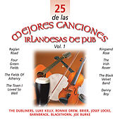 25 de las Mejores Canciones IrlandesasDe Pub, Vol. 1 by Various Artists
