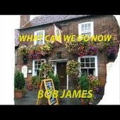 What Can We Do Now - Single de Bob James