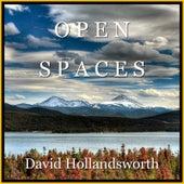 Open Spaces by David Hollandsworth