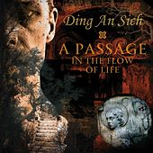 A Passage in the Flow of Life by Ding An Sich