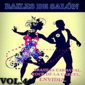 Bailes de Salón Vol. 4 by Various Artists