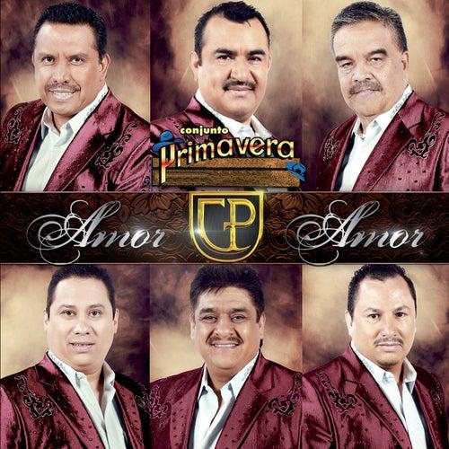 Amor Amor by Conjunto Primavera