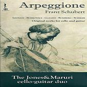 Arpeggione by Various Artists