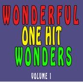 Wonderful One Hit Wonders, Vol. 1 de Various Artists