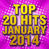 Top 20 Hits January 2014 by Piano Tribute Players