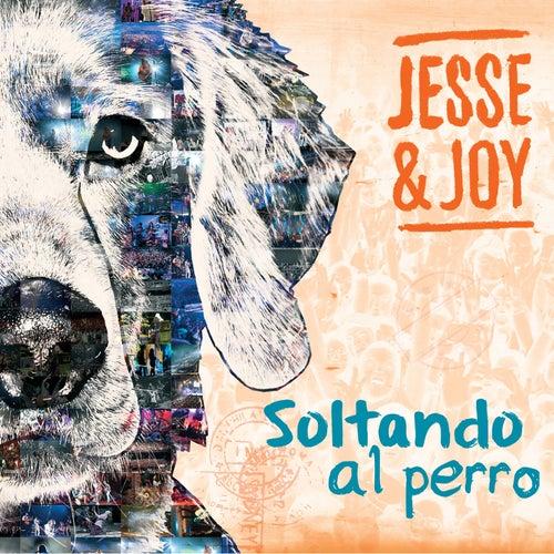 Soltando al perro (USA) by Jesse & Joy