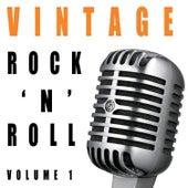 Vintage Rock 'N' Roll, Vol. 1 by Various Artists