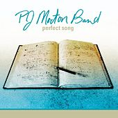 Perfect Song by PJ Morton