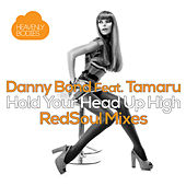 Hold Your Head Up High (RedSoul Mixes) by Danny Bond