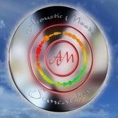 Suncatcher by Acoustic Moods