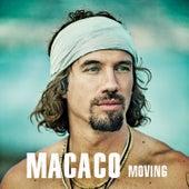 Moving de Macaco