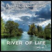 River of Life by David Hollandsworth