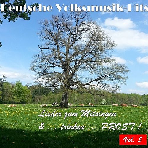Deutsche Volksmusik Hits - Lieder zum Mitsingen & ...trinken...Prost! Vol. 5 by Various Artists