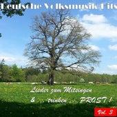Deutsche Volksmusik Hits - Lieder zum Mitsingen & ...trinken...Prost! Vol. 3 by Various Artists