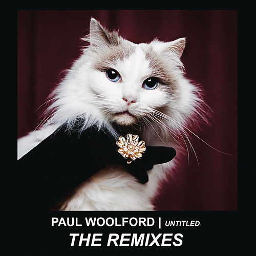 Untitled (Call Out Your Name) (Remixes) by Paul Woolford