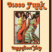 Disco Funk Dancefloor Hits by Various Artists