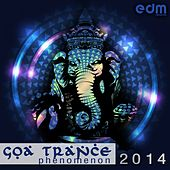 Goa Trance Phenomenon 2014 de Various Artists