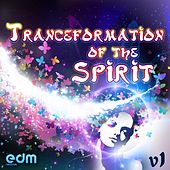 Tranceformation Of The Spirit, Vol. 1 de Various Artists
