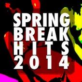 Spring Break Hits 2014 de Various Artists