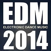 Edm 2014 by Various Artists