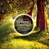 Spring Essentials - Presented By Parquet Recordings von Various Artists