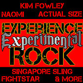 Experience Experimental Rock by Various Artists