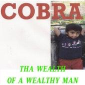 Tha Wealth of a Wealthy Man by Cobra