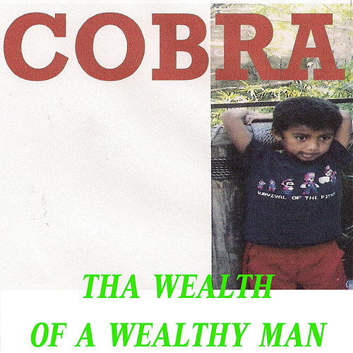 Tha Wealth of a Wealthy Man by Cobra