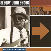 Goin' To Brownsville by Sleepy John Estes