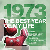 The Best Year Of My Life: 1973 de Various Artists