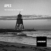Two Thousand Six / Cold Love by Apes
