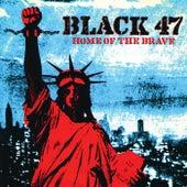 Home Of The Brave von Black 47