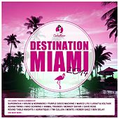 Destination: Miami 2014 de Various Artists