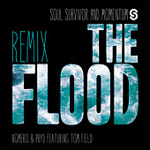 He Is Alive (feat. Tom Field) (Nomero & Pryd Remix) by Soul Survivor