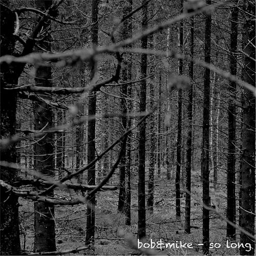 So Long by Bob (8)