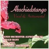 Abschiedstango (Vocal & Instrumental) by Various Artists