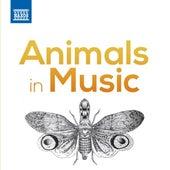 Animals in Music de Various Artists