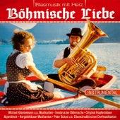 Böhmische Liebe von Various Artists