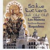 Salve Rociera by Various Artists