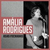 Asas Fechadas de Amalia Rodrigues