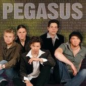 Pegasus by Pegasus