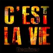 C'est La Vie (Remixes) by Khaled (Rai)