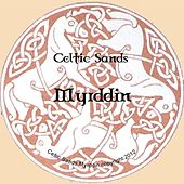 Myrddin by Celtic Sands