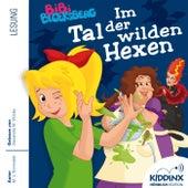 Im Tal der wilden Hexen (Hörbuch) von Bibi Blocksberg
